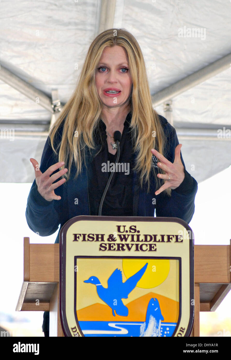 Actress Kristin Bauer speaks at the first US Fish & Wildlife crushing of confiscated ivory November 14, 2013 in Commerce City, CO. The ivory stockpile collected over the past 25 years through smuggling busts and border confiscations was fed through a stone crusher and destroyed to discourage poaching. - Stock Image
