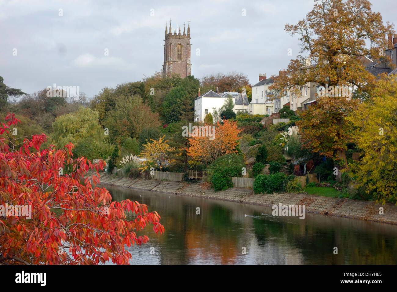 Autumn colour on the River Exe, Tiverton, Devon with St Peter's Church tower - Stock Image