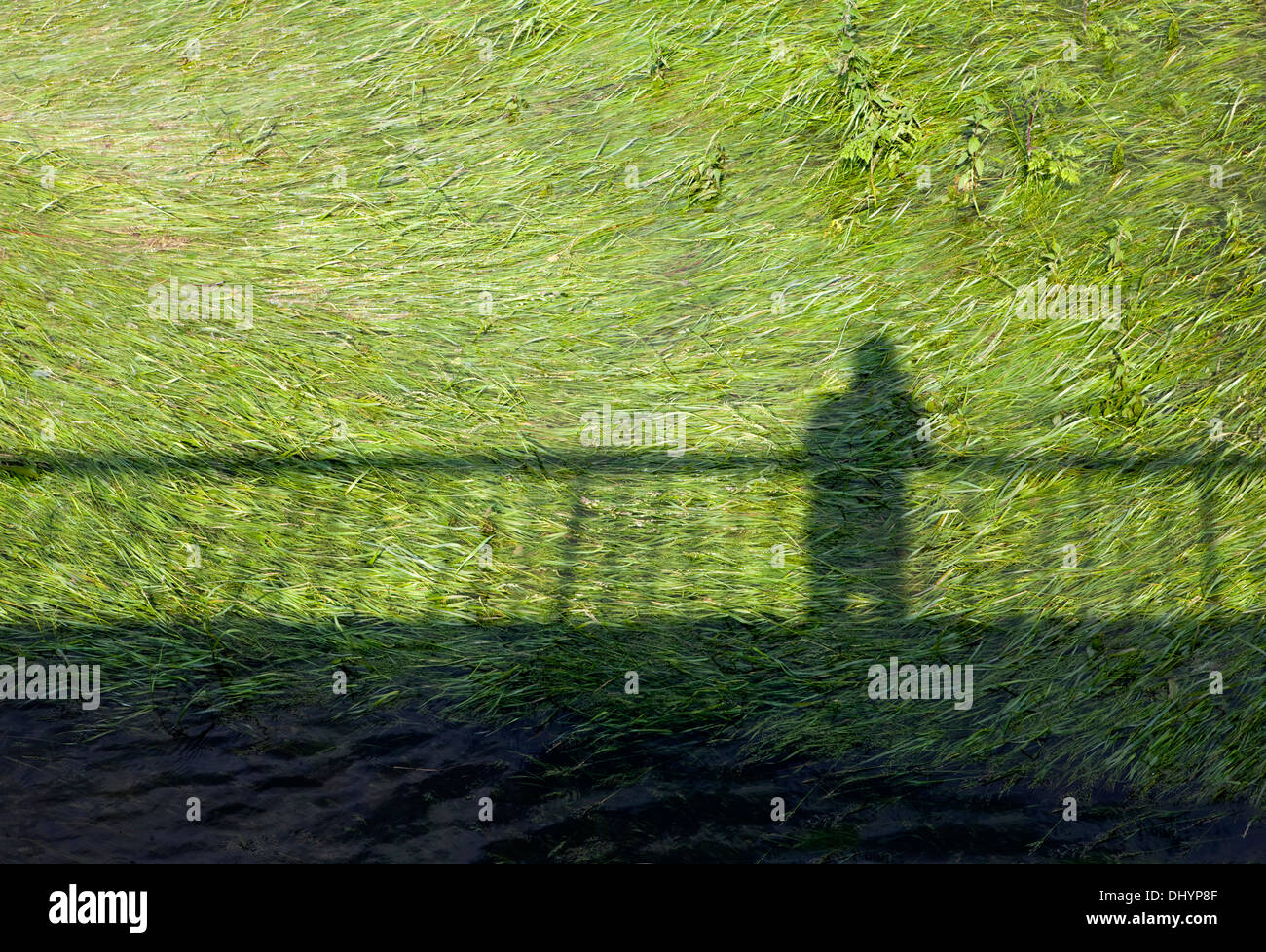 Shadow of a person and a fence - Stock Image