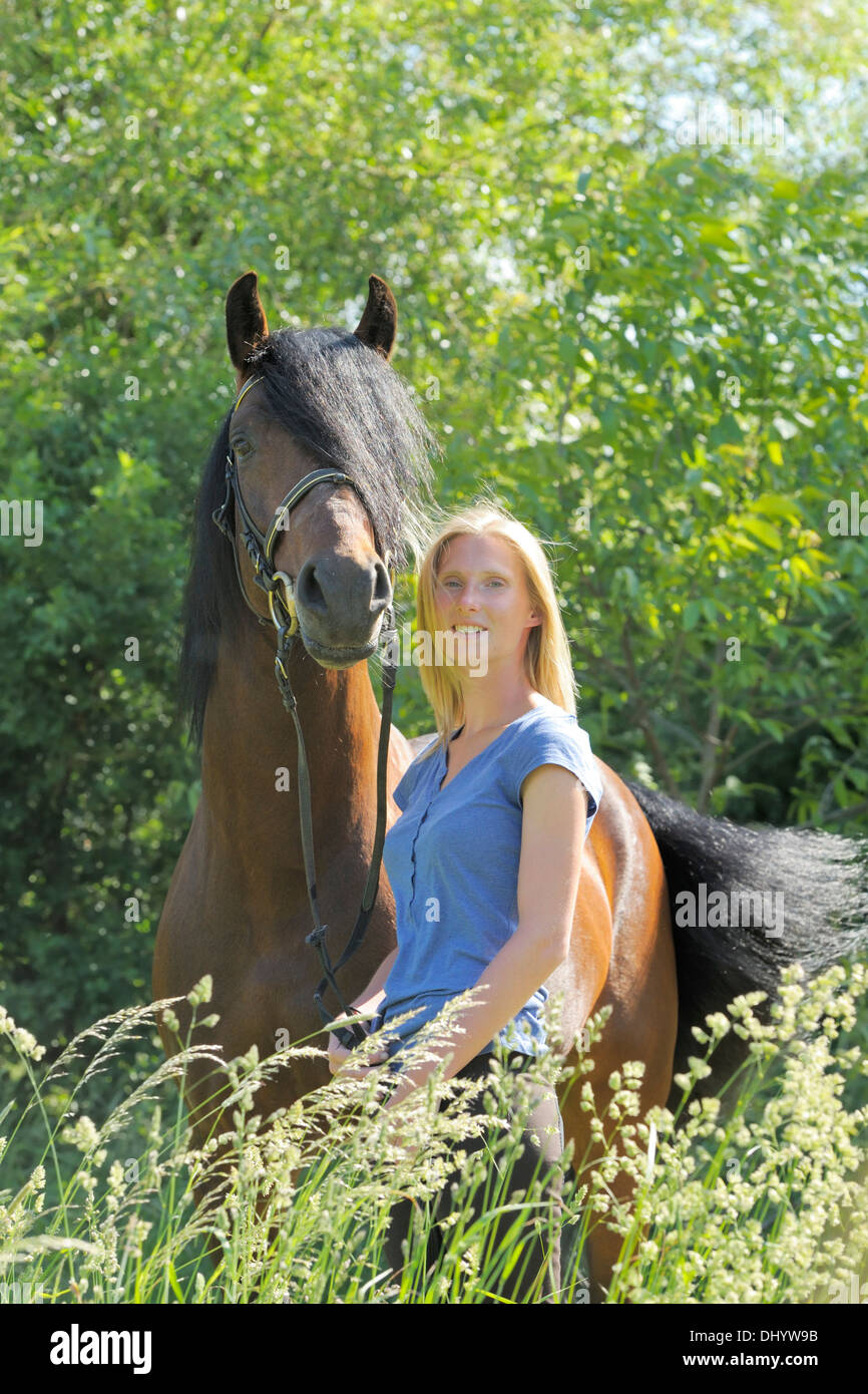 Young woman and a Connemara pony stallion - Stock Image
