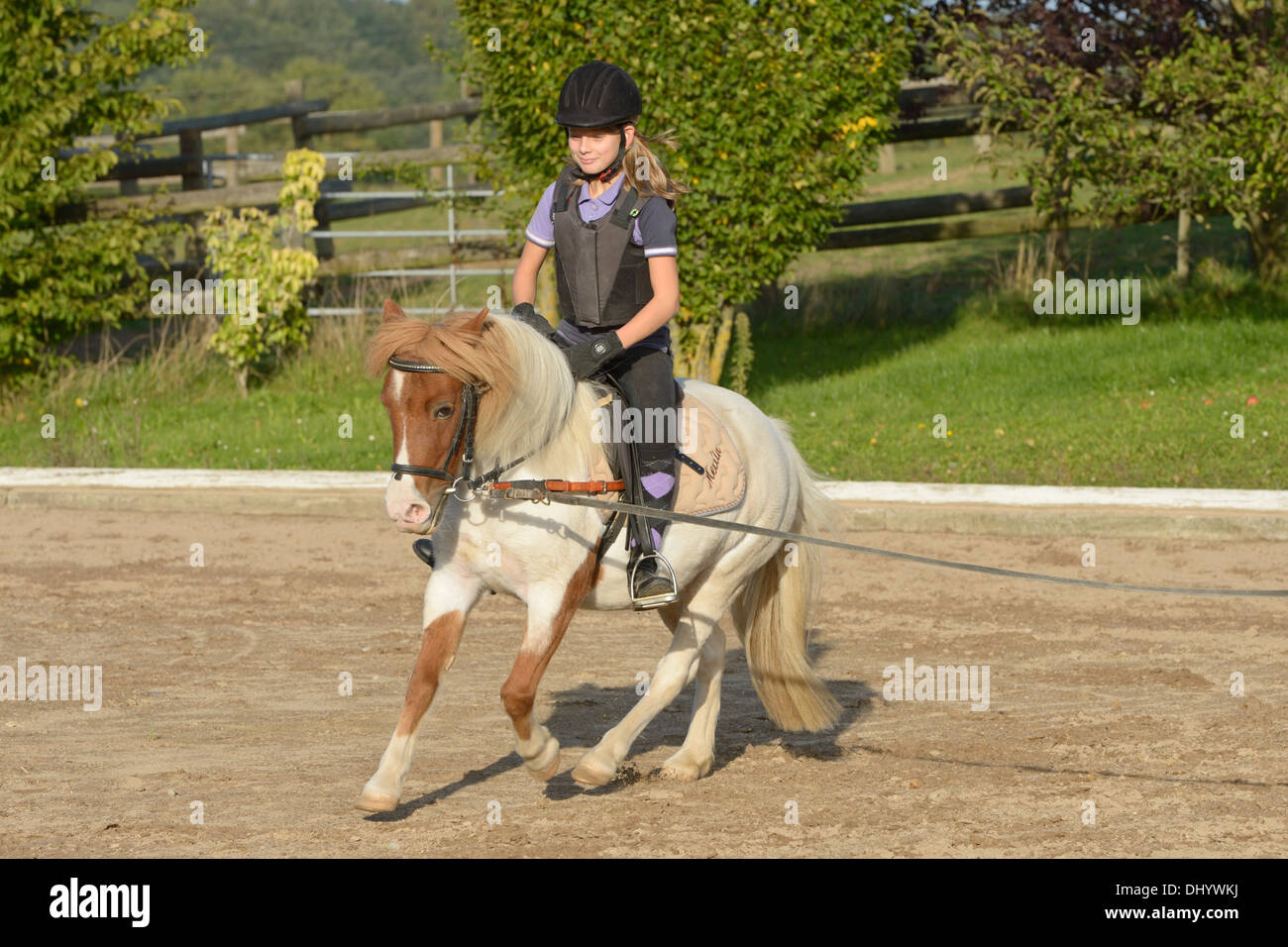Girl wearing a body protector having a lunge lesson on pony cantering - Stock Image