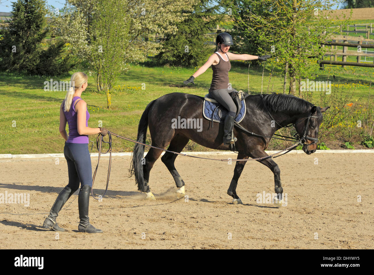 You tell Lunging the adult rider book right! excellent