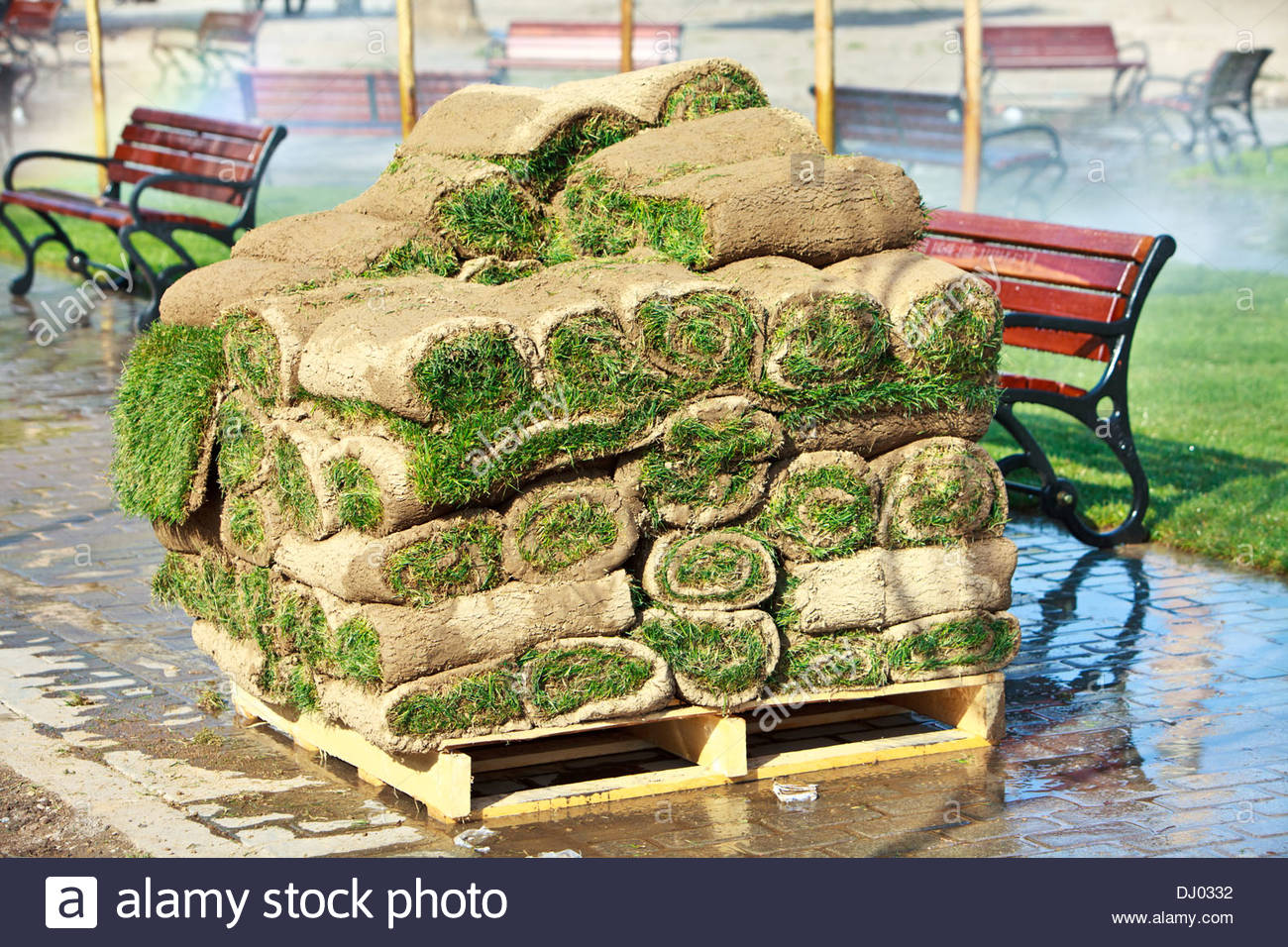 Grass sod on pallet ready for planting lawn or landscaping - Stock Image