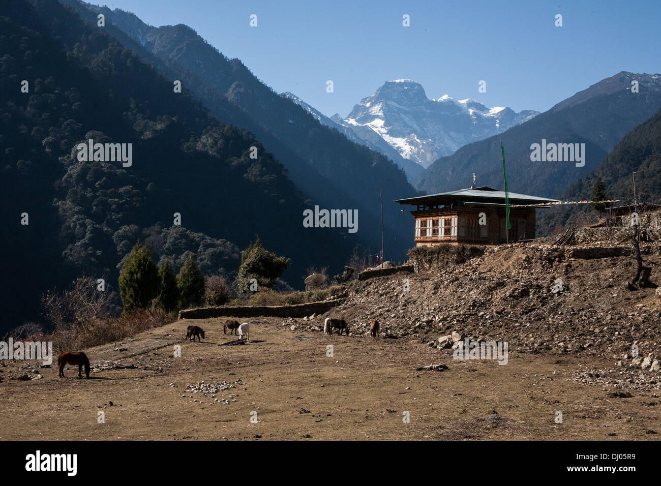 A traditional house perched amongst the Bhutanese Himalayas - Stock Image