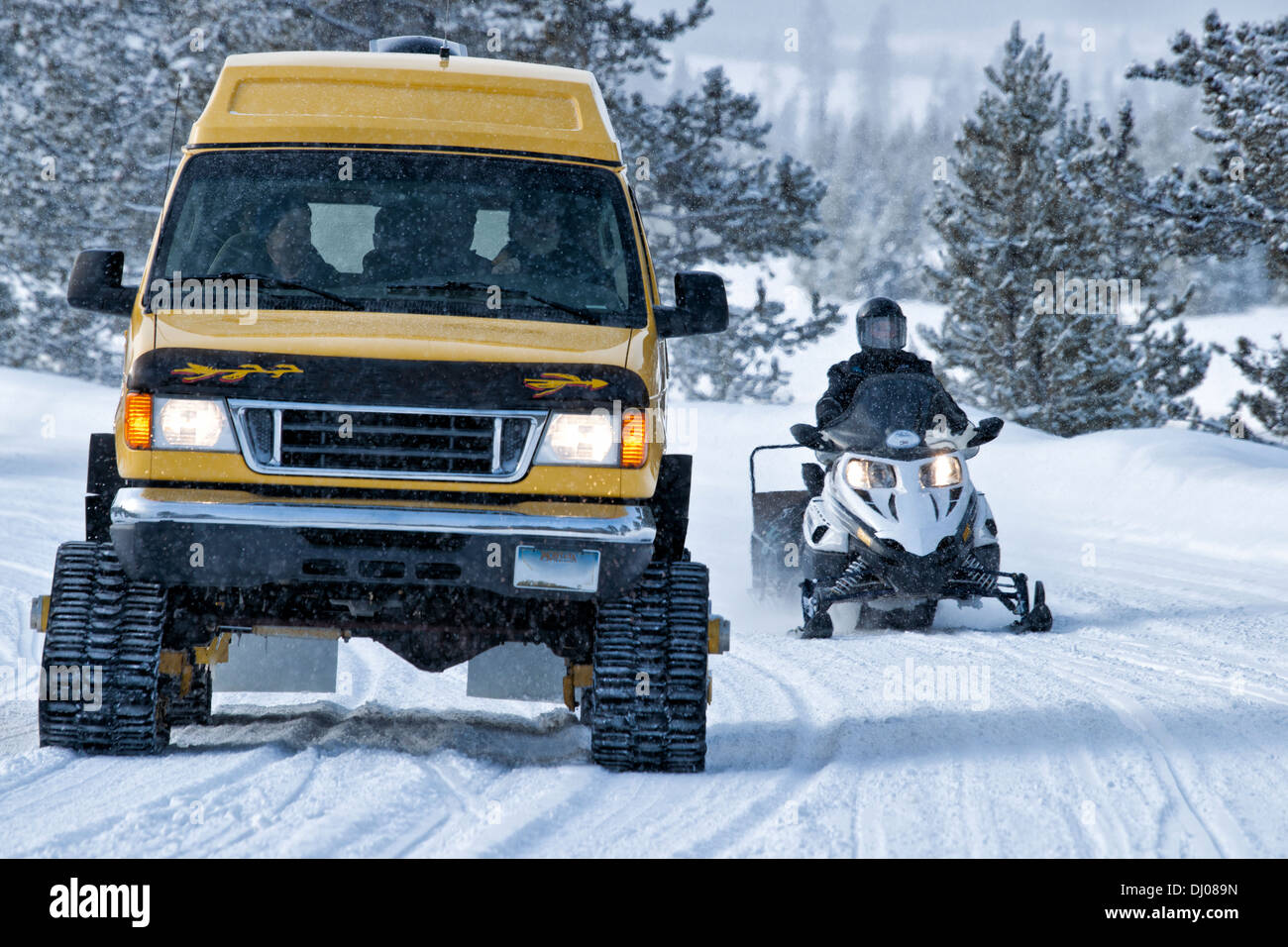 Winter transportation in Yellowstone is restricted to either snowmobile or snowcoach; Yellowstone National Park; WY; USA - Stock Image