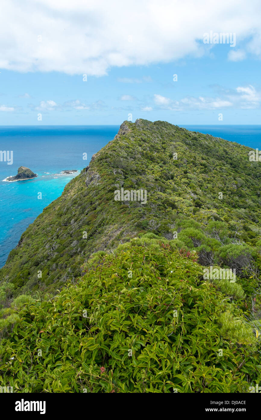 View of Mount Eliza from the Max Nicholls Memorial track, Lord Howe Island, Australia - Stock Image