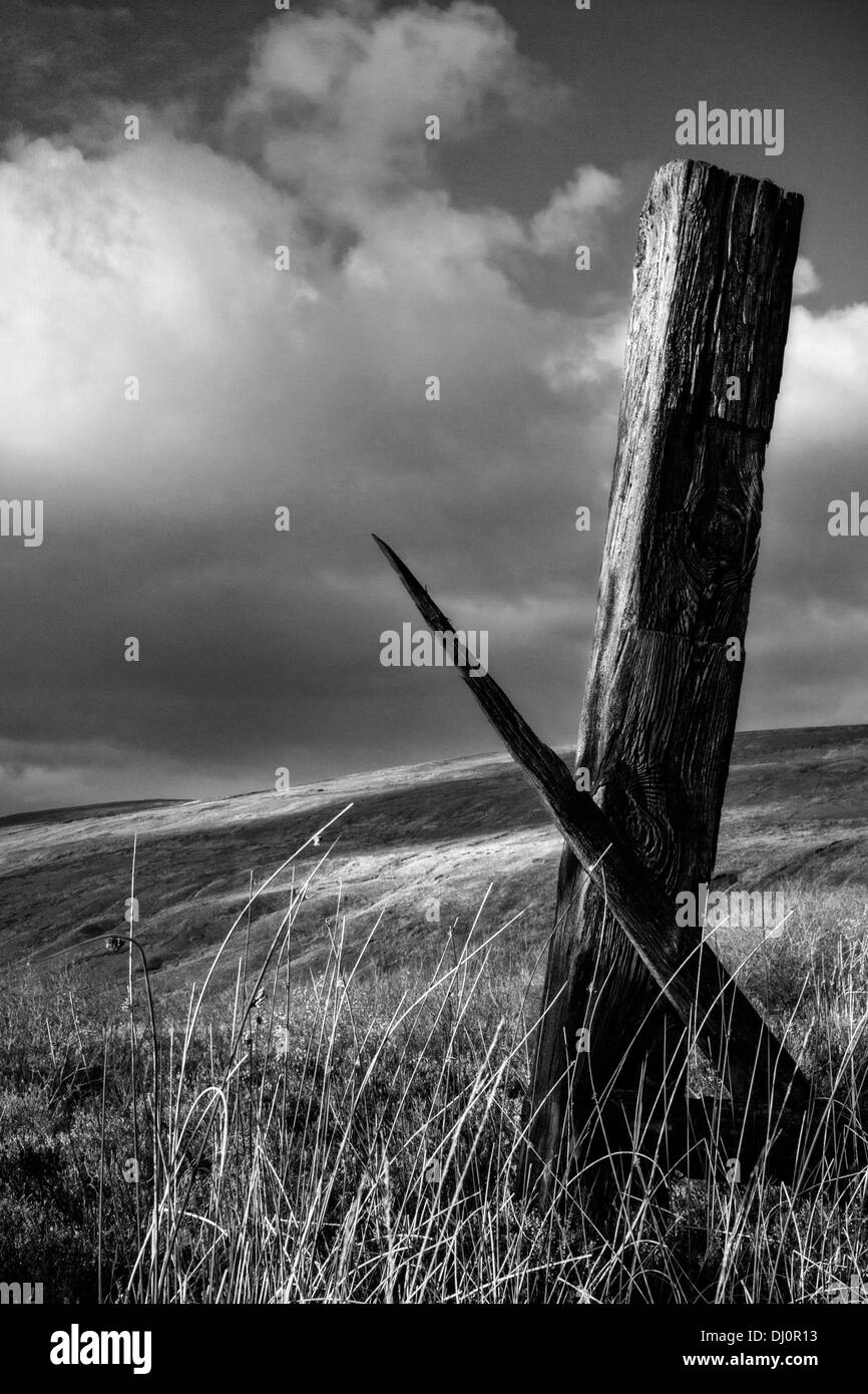 Wooden Fence Posts Stock Photos & Wooden Fence Posts Stock Images ...
