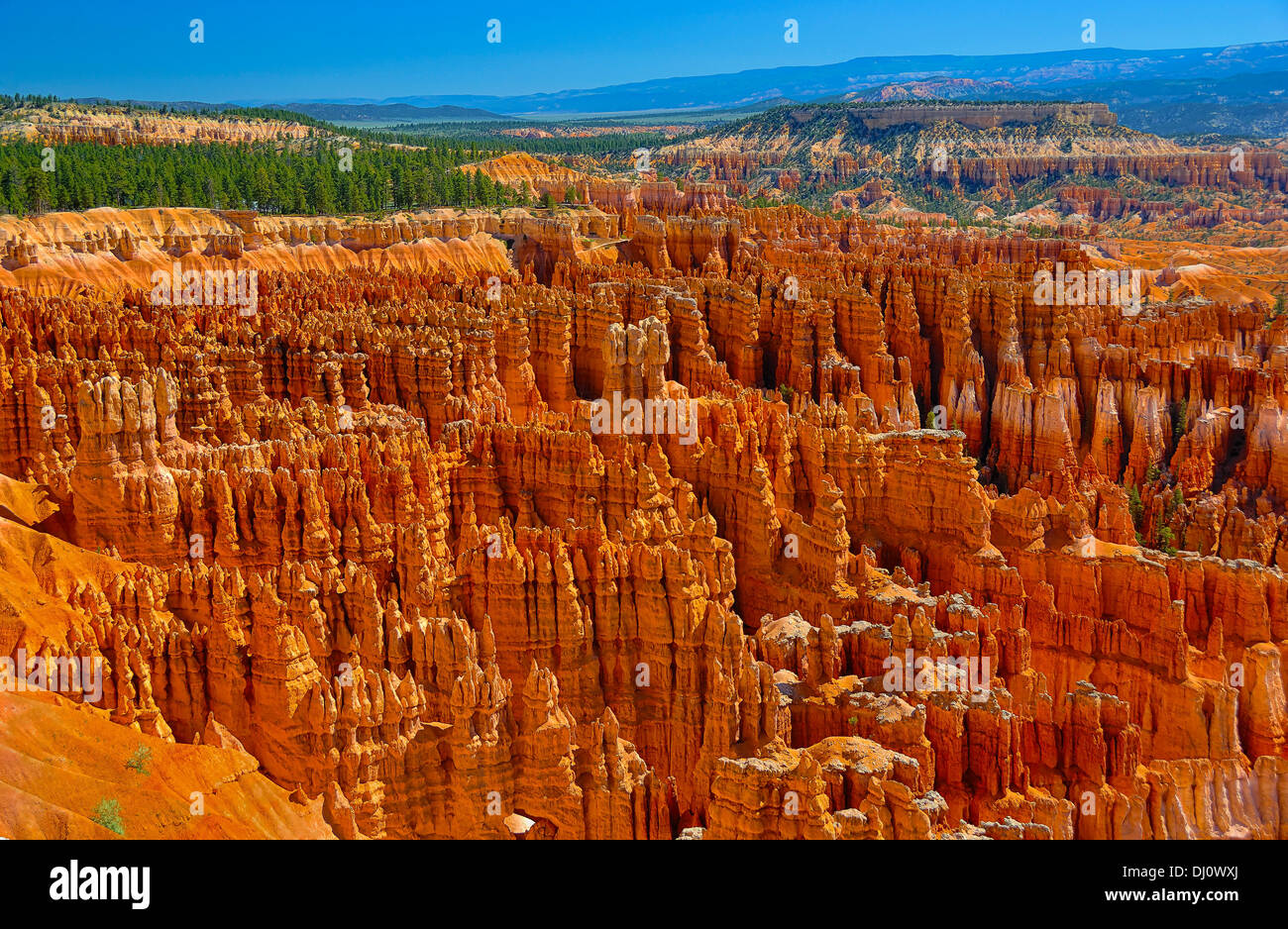 The extraordinary amphitheater of rocks at Bryce Canyon National Park in  Utah, USA. Stock Photo