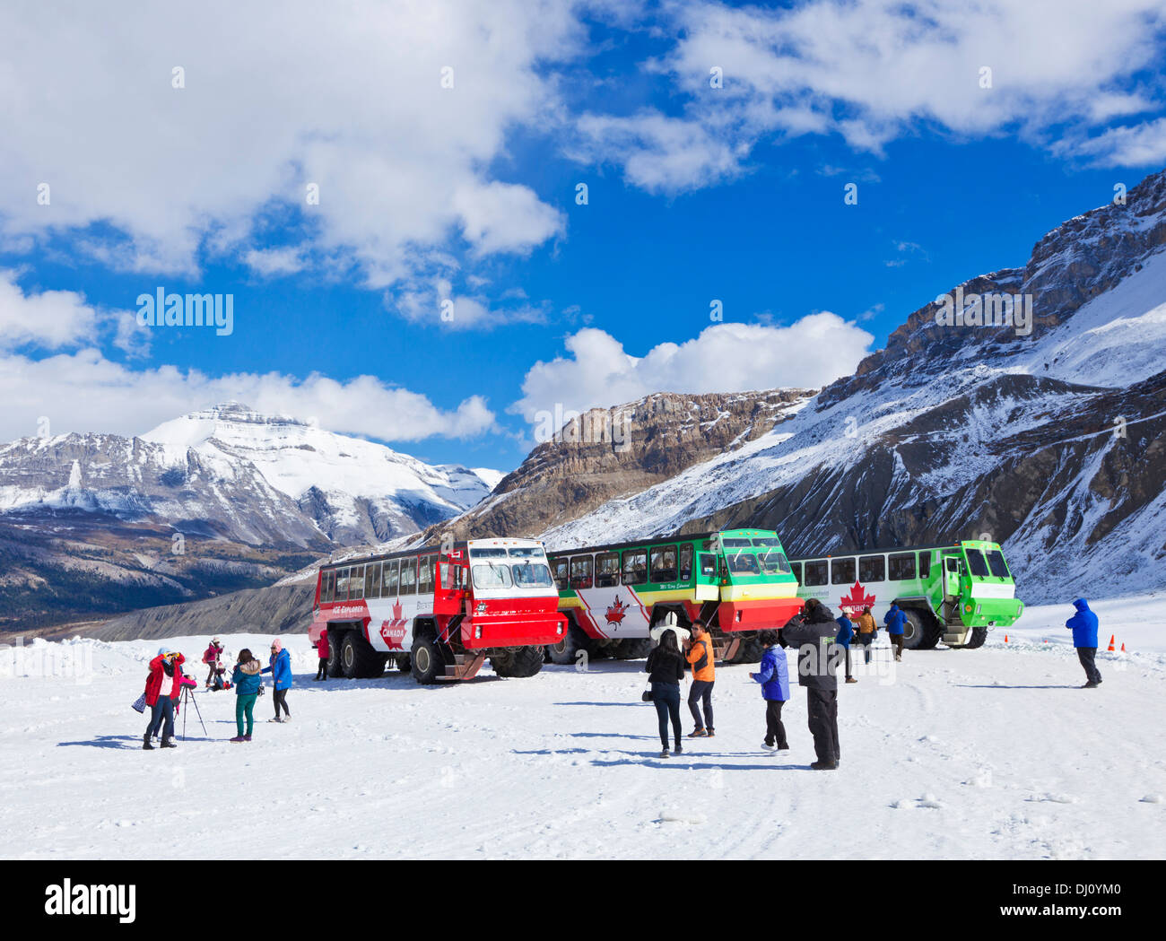Brewsters Snocoach Ice Explorer Columbia Icefield Athabasca glacier in Jasper National Park Alberta Canada North America - Stock Image