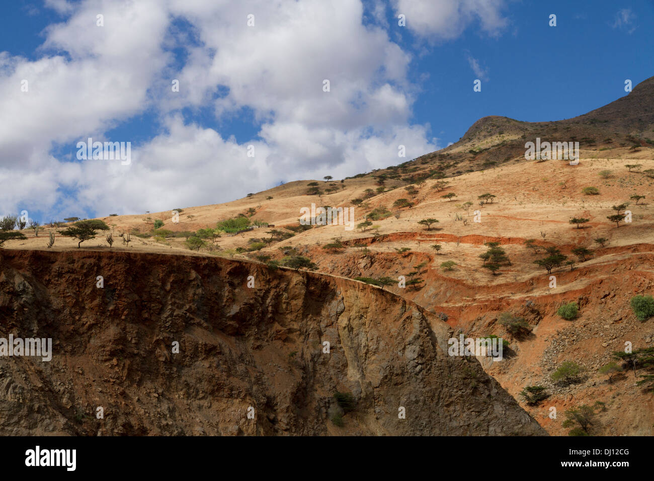 Semi-arid vegetation in the Huancabamba Depression, Cajamara, Peru Stock Photo