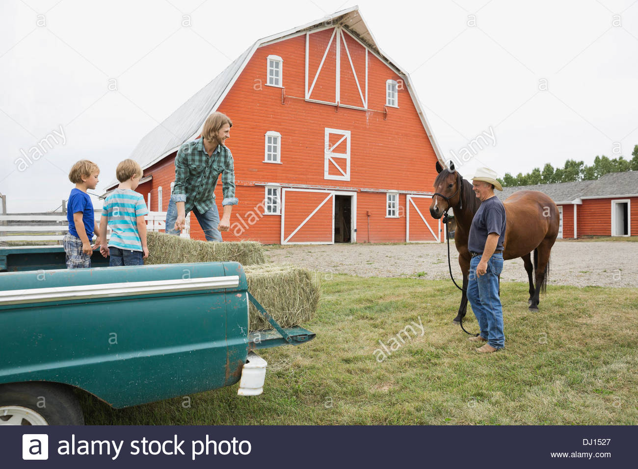 Man unloading hay from pick up truck - Stock Image