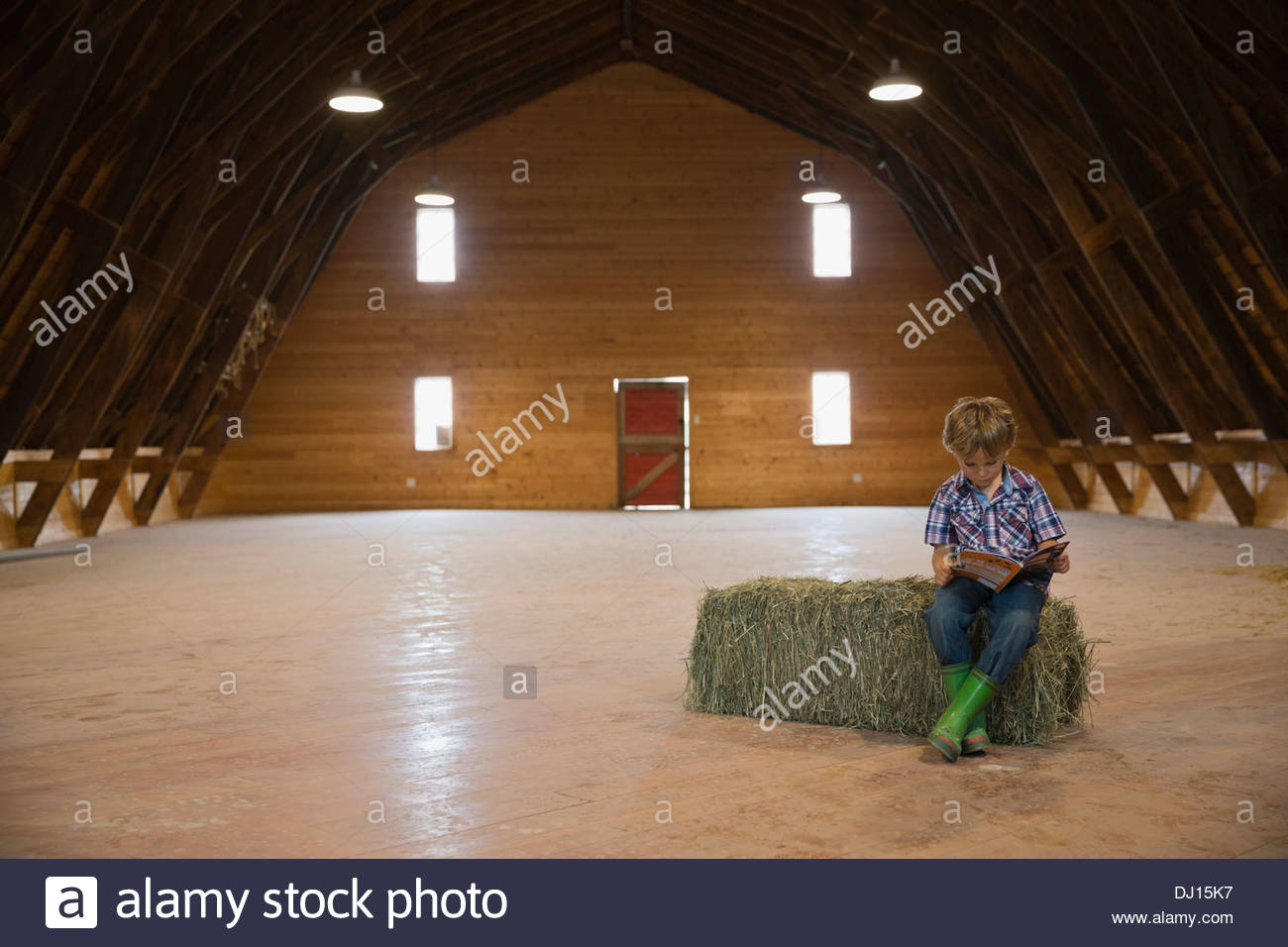Boy reading book on hay bale in barn - Stock Image