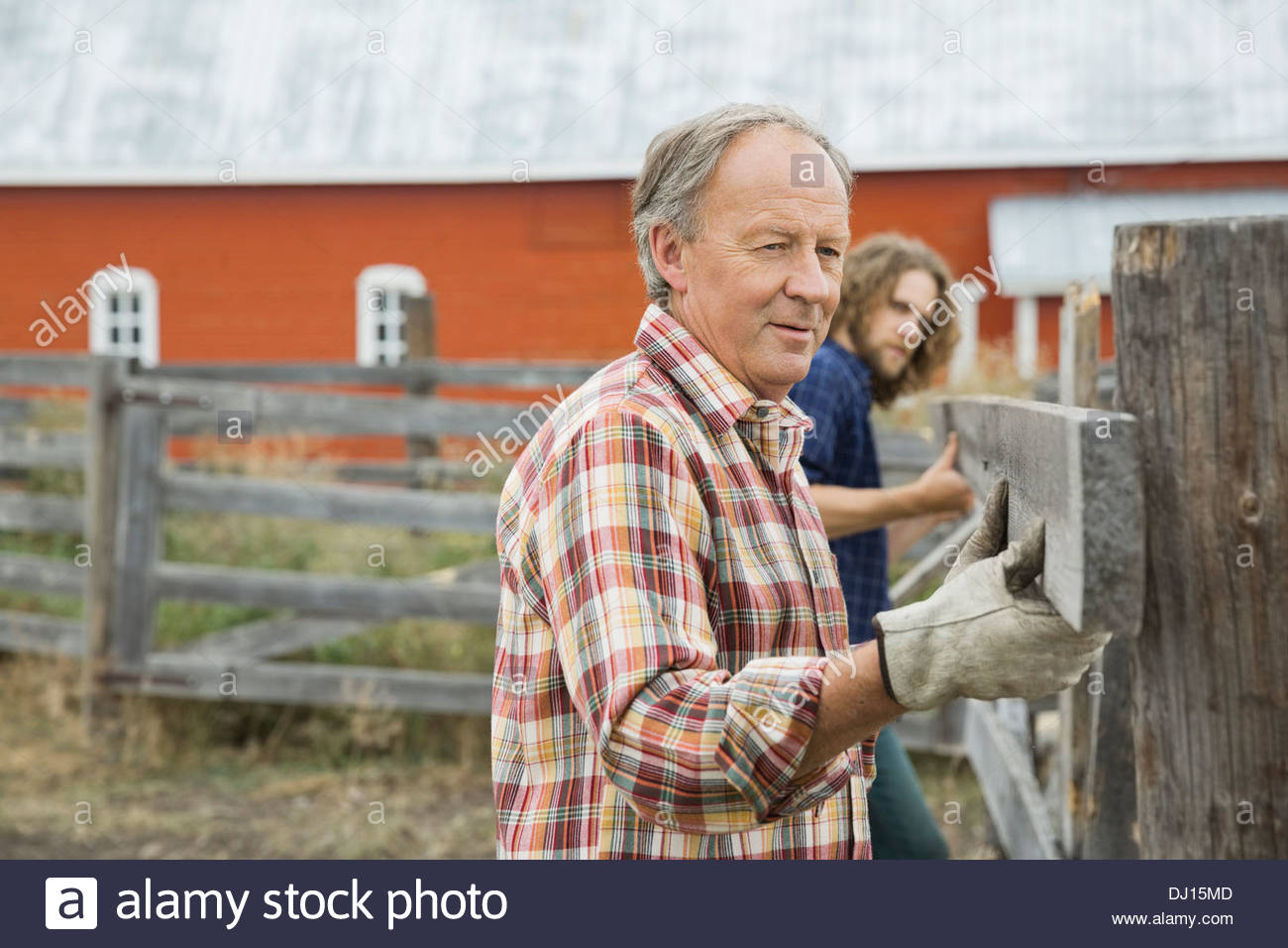 Father with son adjusting fence plank on farm - Stock Image