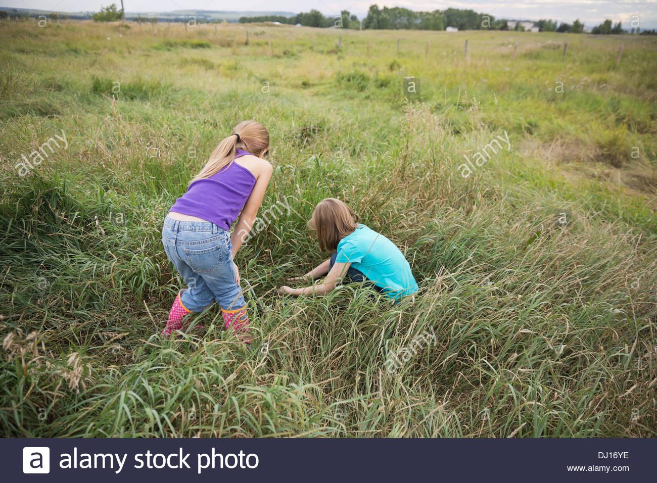 Girls exploring plants in field - Stock Image