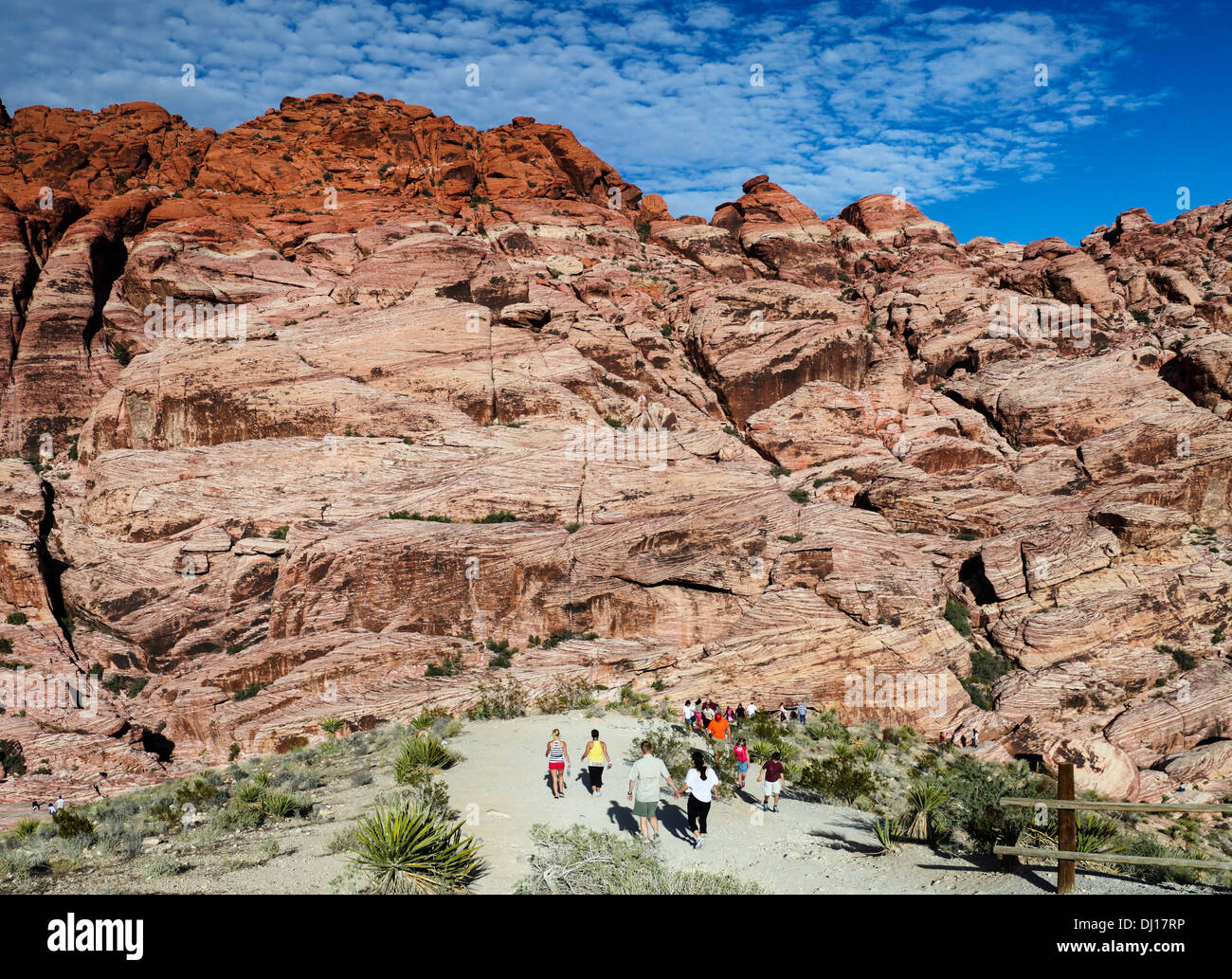 Visitors explore Red Rock Canyon National Conservation Area, about 20 miles from Las Vegas - Stock Image
