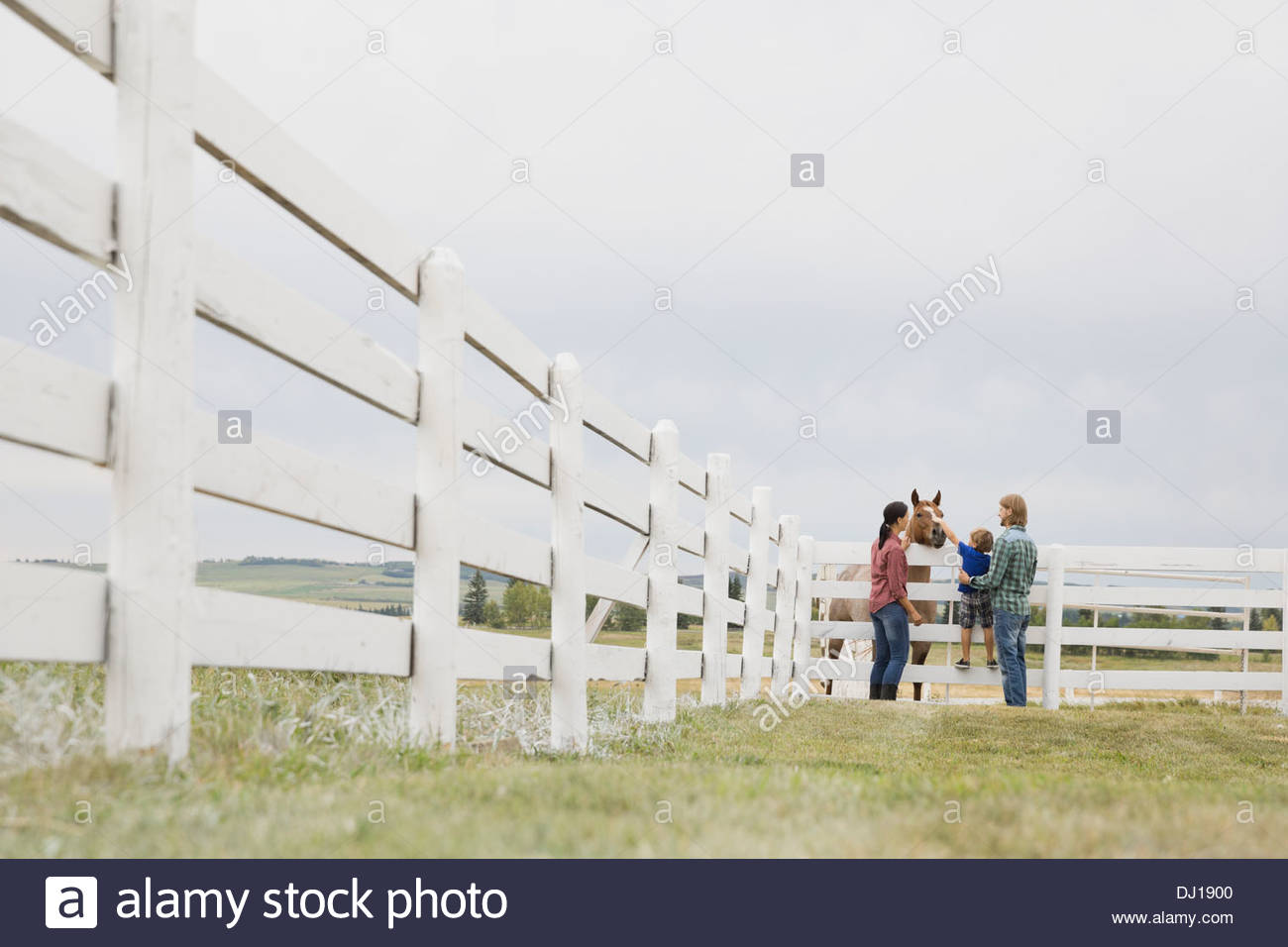 Family of three feeding horse on ranch - Stock Image