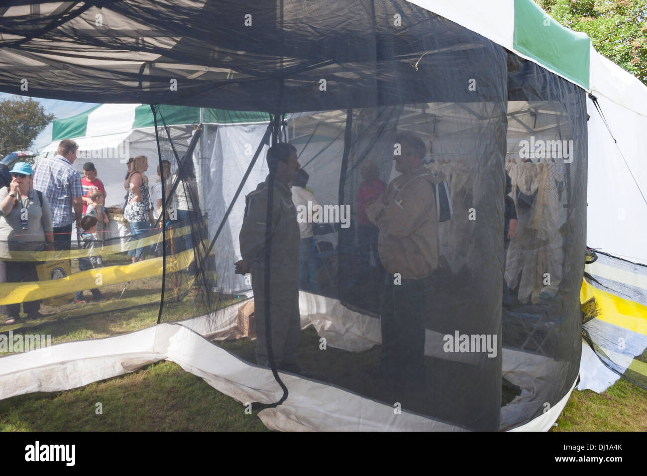 Beekeepers in apiary tent - Stock Image & Bee Tent Stock Photos u0026 Bee Tent Stock Images - Alamy