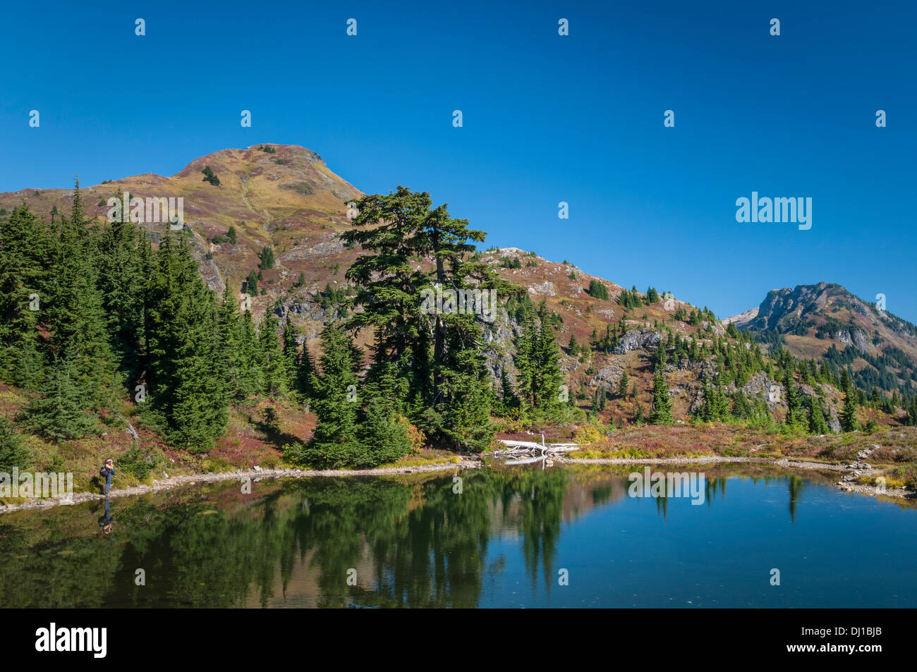 Tarn below Yellow Aster Butte, Mount-Baker Snoqualmie National Forest, North Cascades, Washington. - Stock Image