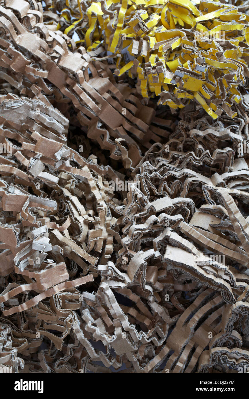 Shredded card recycling recycled - Stock Image