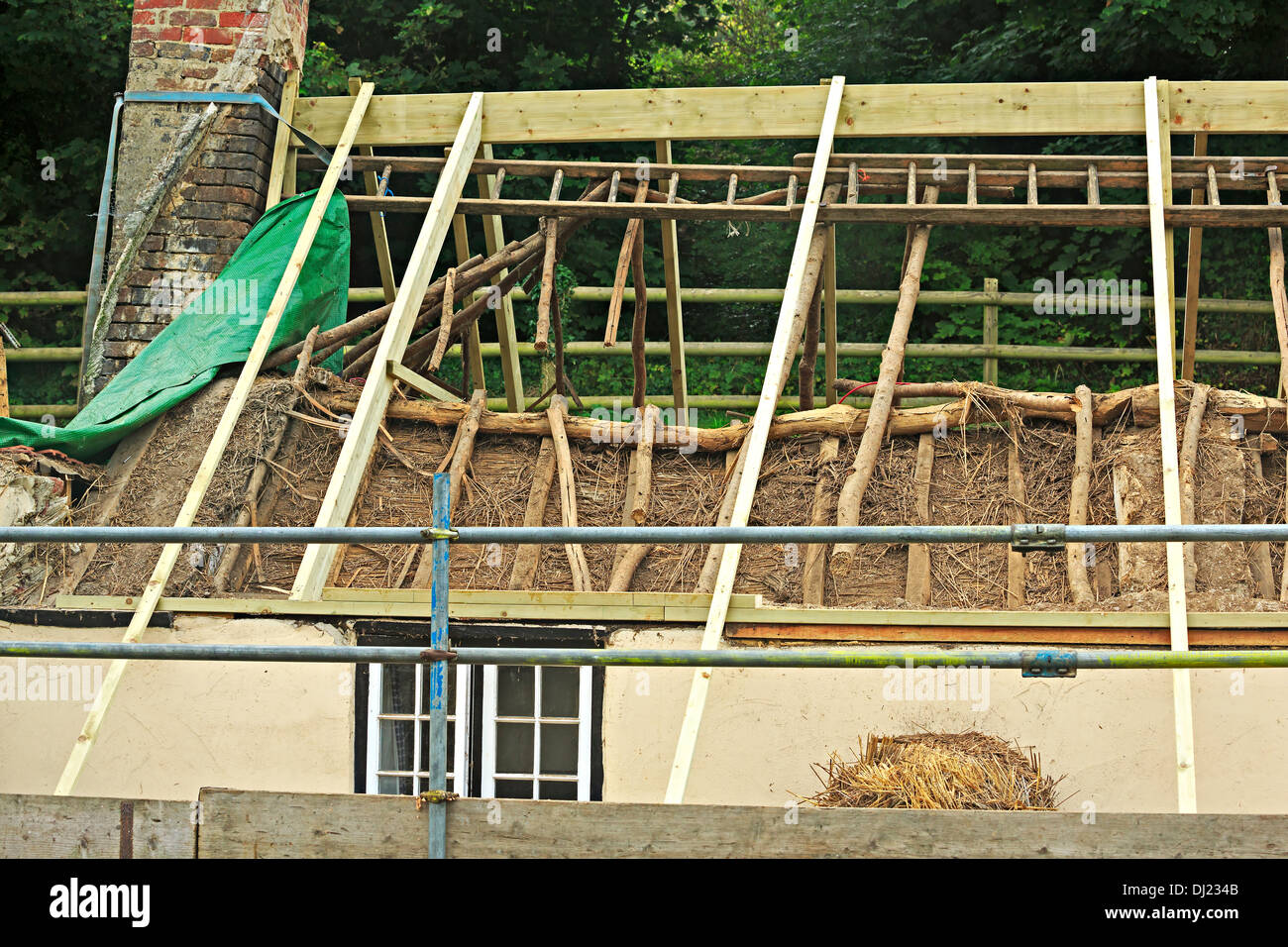New Thatch Stock Photos Amp New Thatch Stock Images Alamy