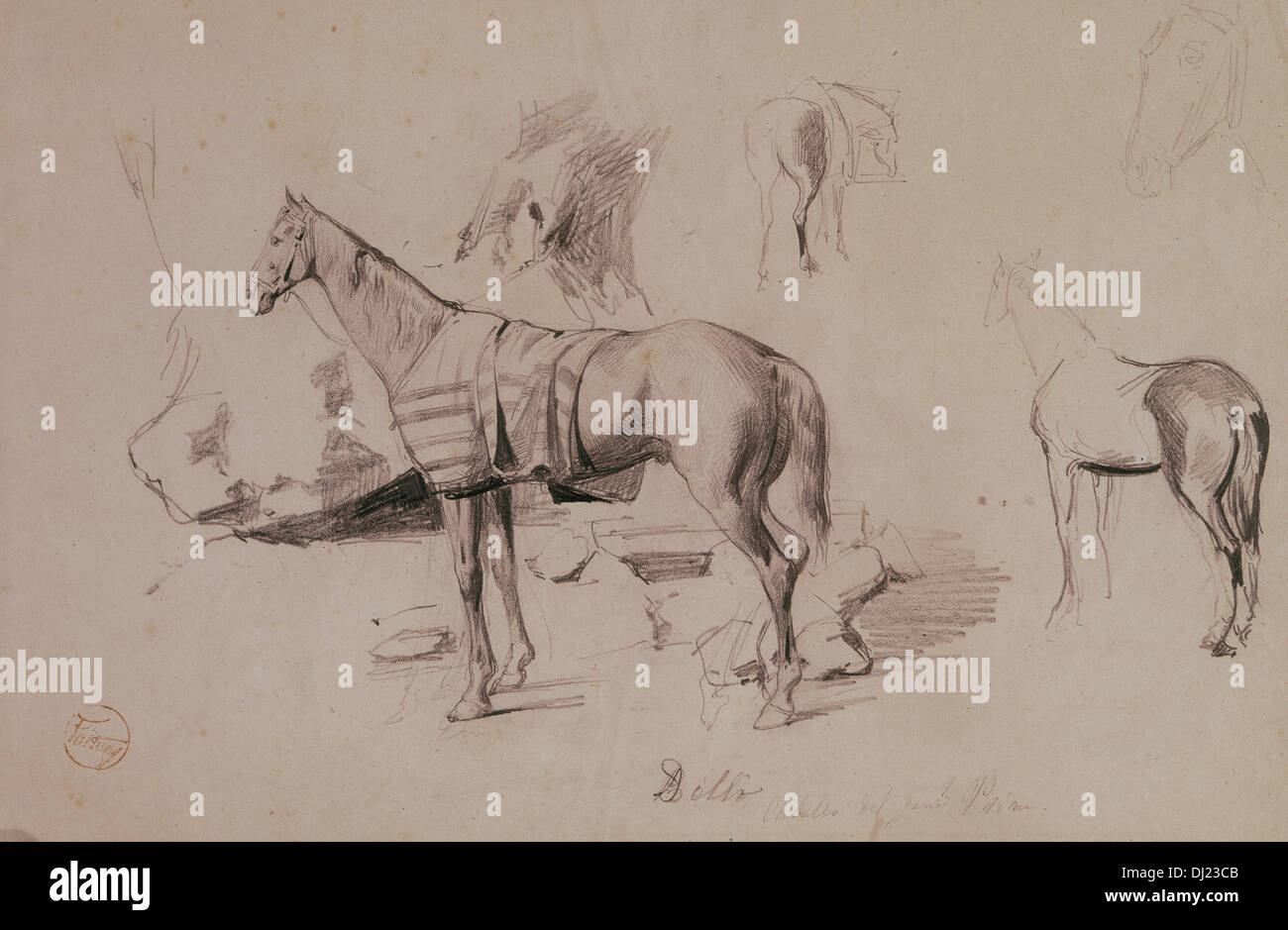 Mariano Fortuny (1838-1874). Spanish painter and printmaker. Dello, horse of General Prim. Drawing in Africa, 1860. - Stock Image