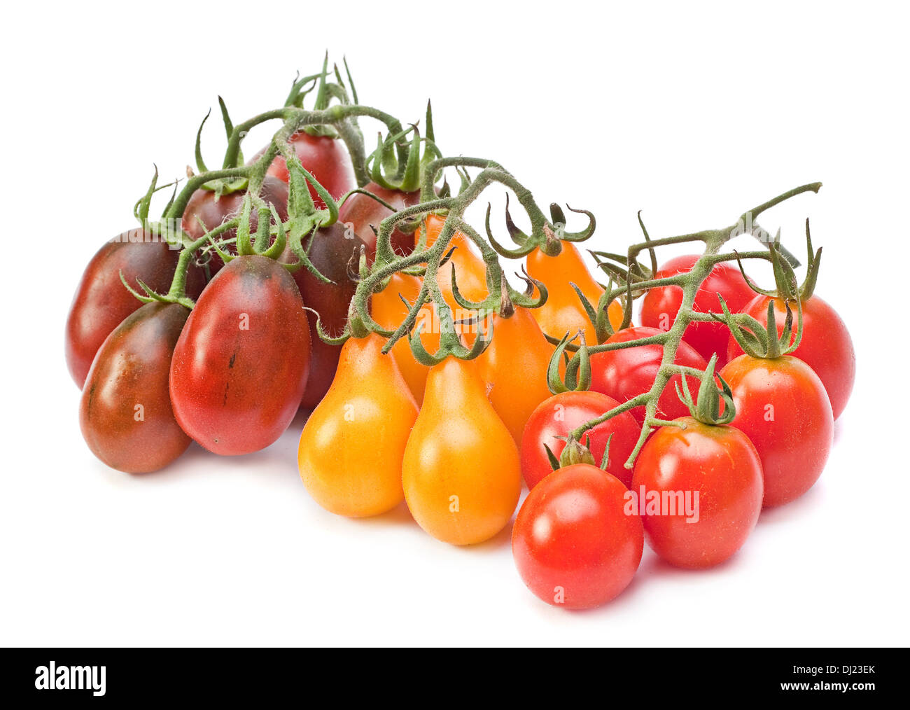 Branch varicolored cherry tomatoes isolated on white - Stock Image