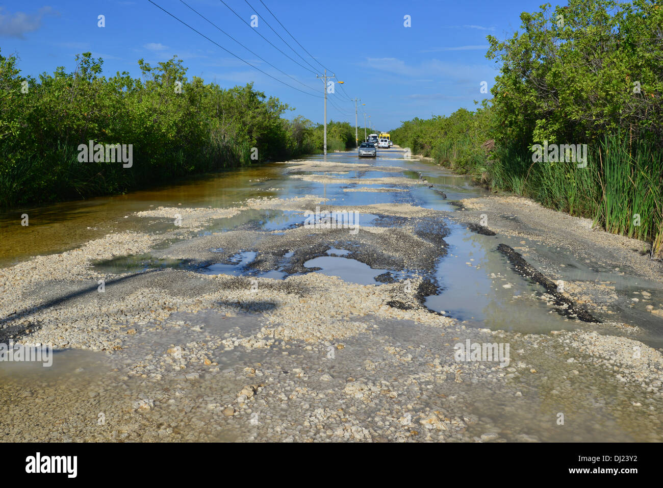 a flooded rutted road in mexico stock photo 62741926 alamy