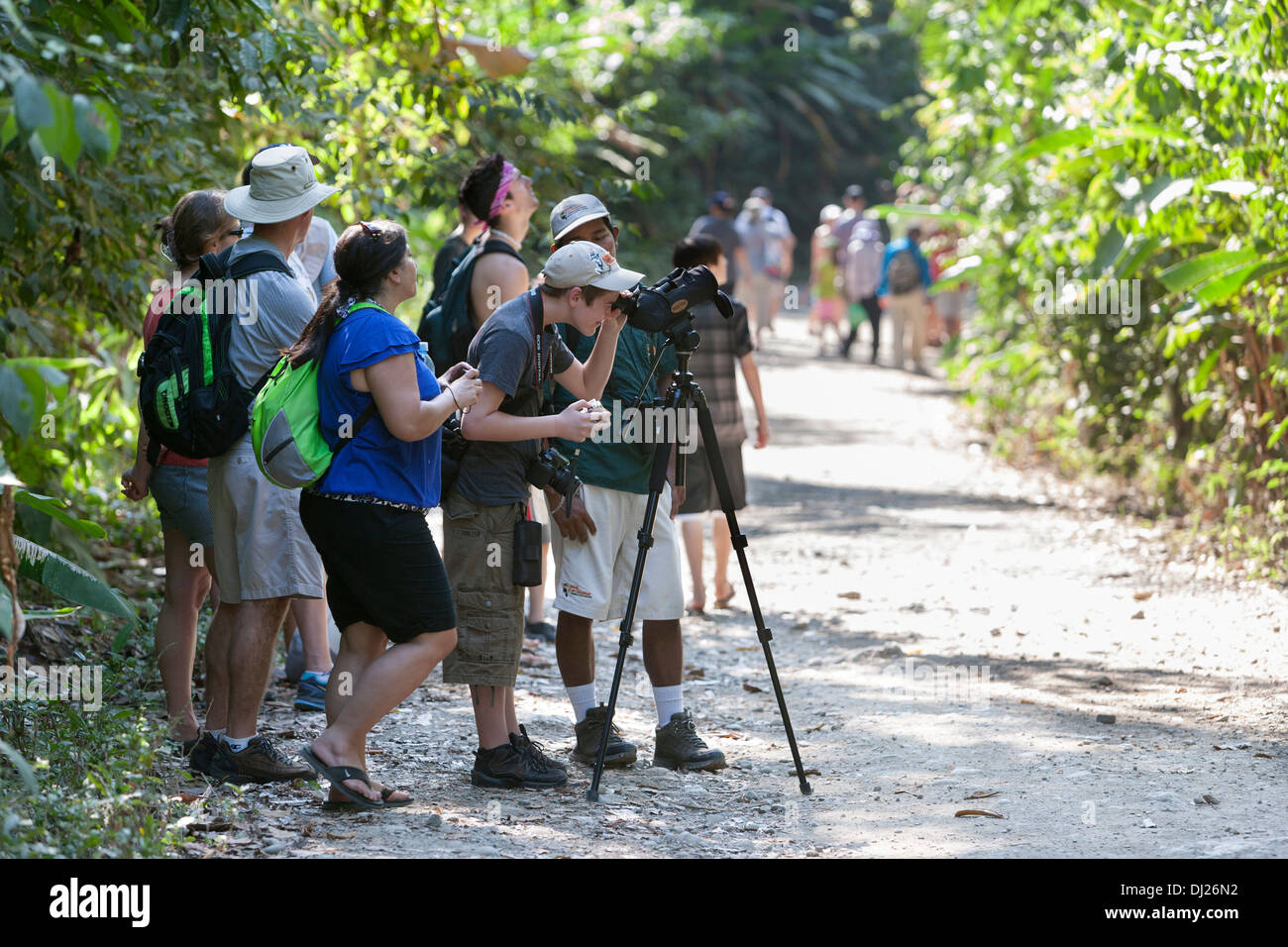 Tourists gather around a guide to get a look at the wildlife at the Manuel Antonio National Park in Costa Rica. - Stock Image