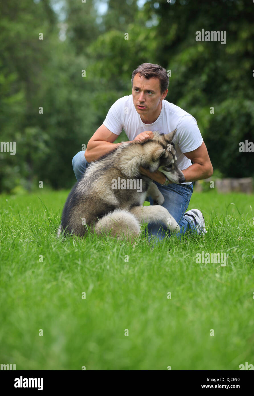 Young man playing with his Alaskan Malamute outdoors - Stock Image