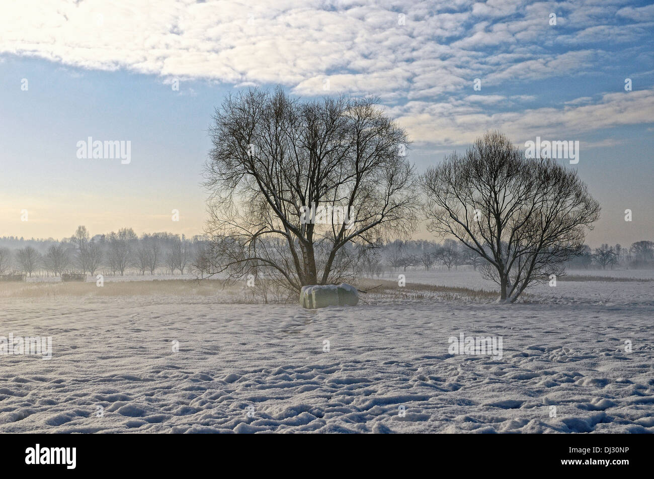 on cold winter mornings - Stock Image