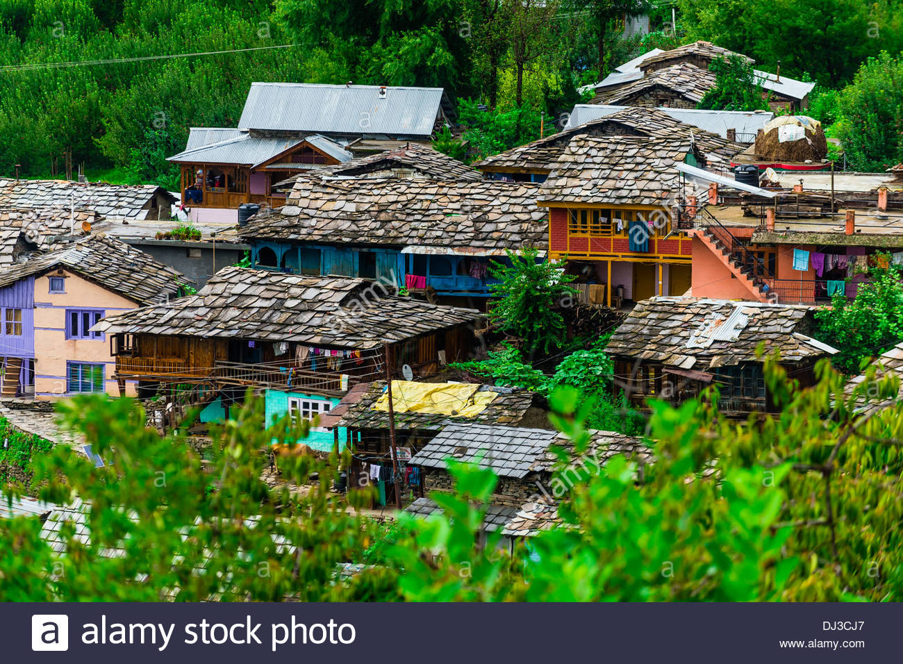 Naggar, near Manali, Himachal Pradesh, India. - Stock Image
