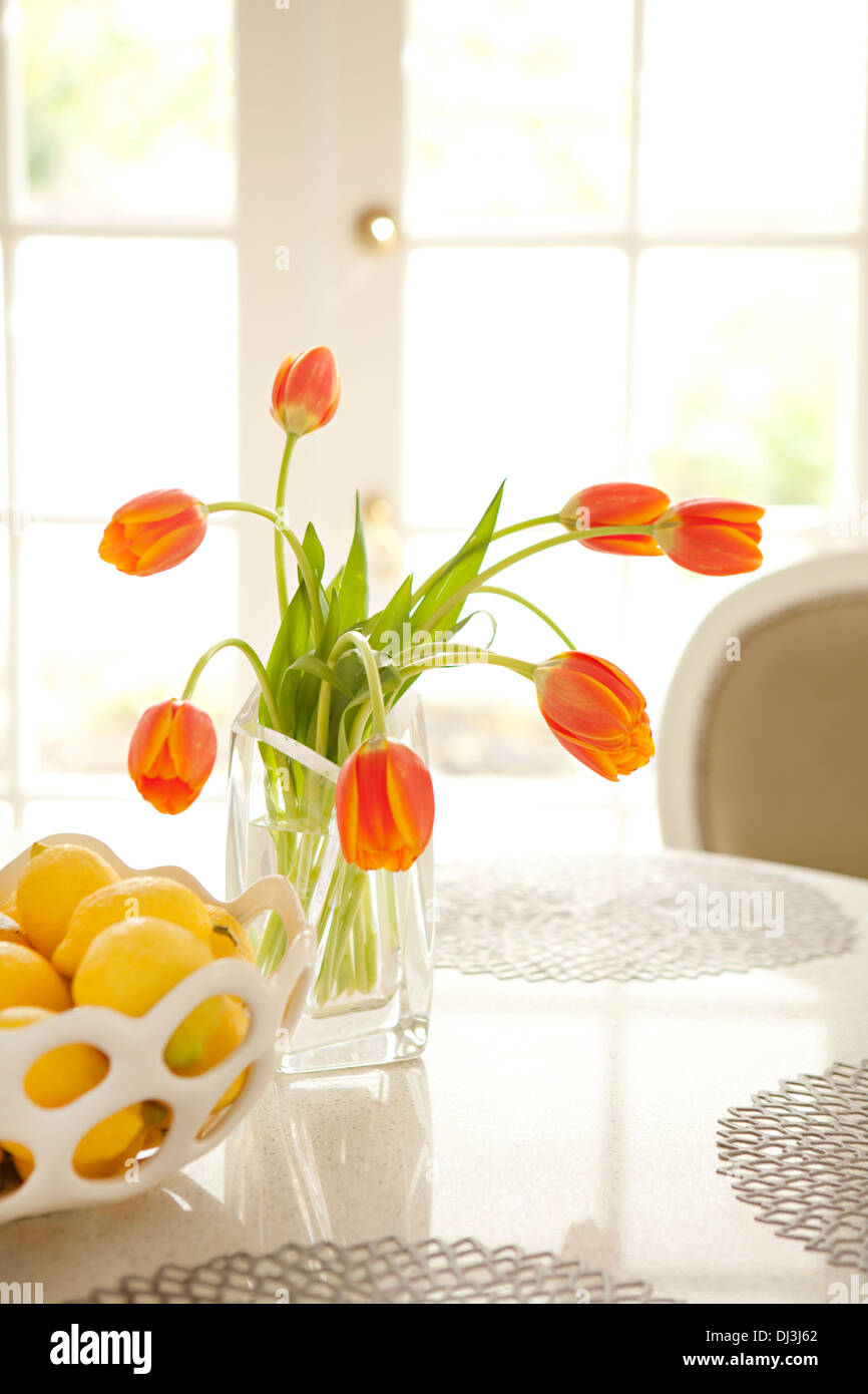 Orange tulips and lemons on table in sunny dining room - Stock Image