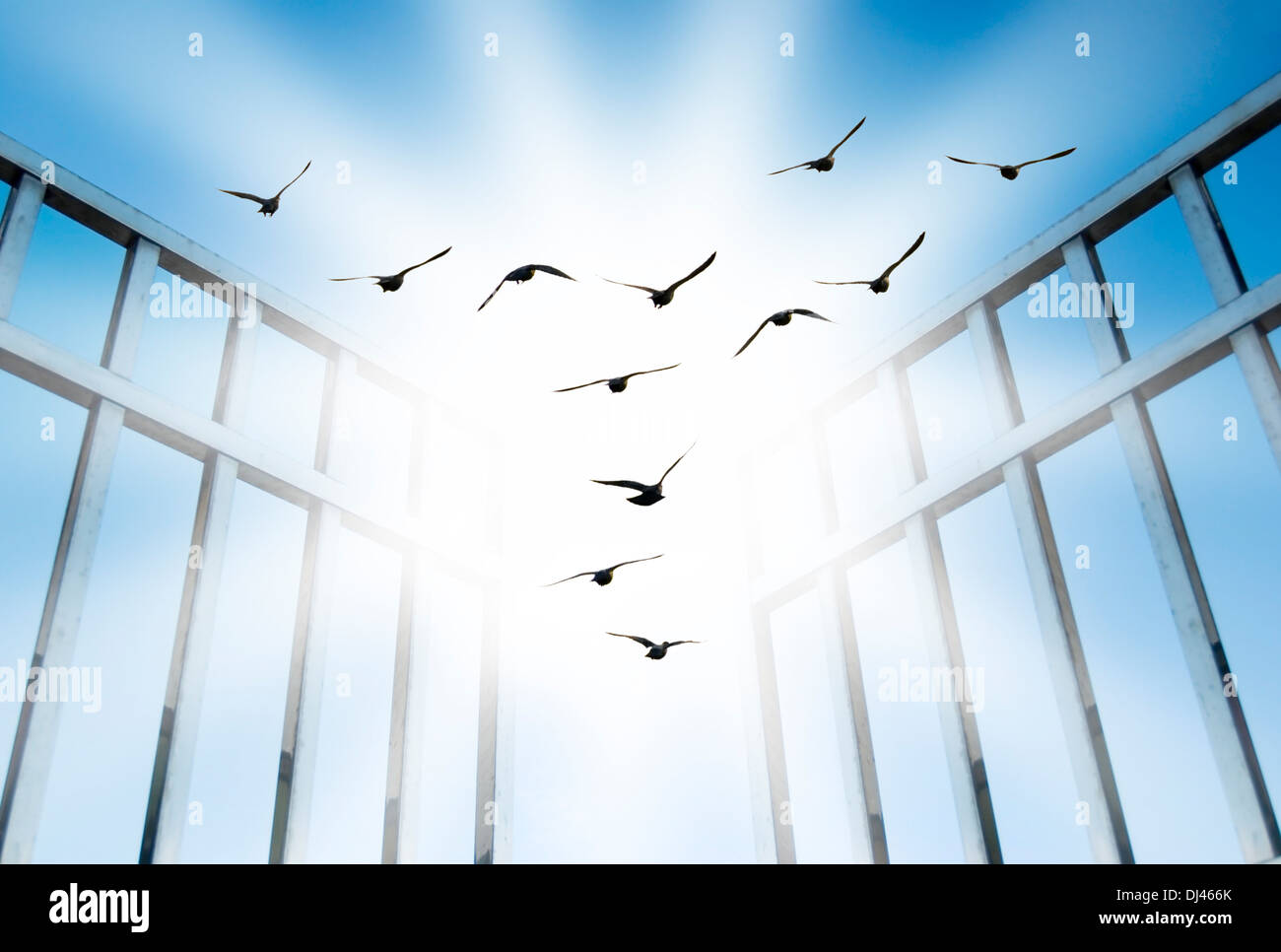 fly overcome the difficult gate - Stock Image