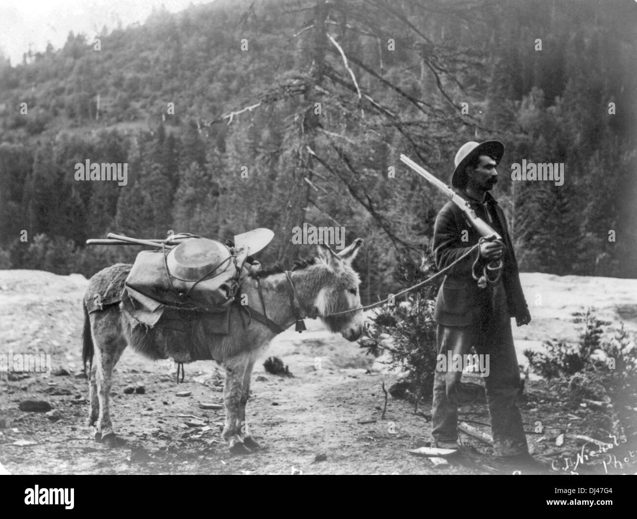 Prospector with pony and supplies, USA - Stock Image