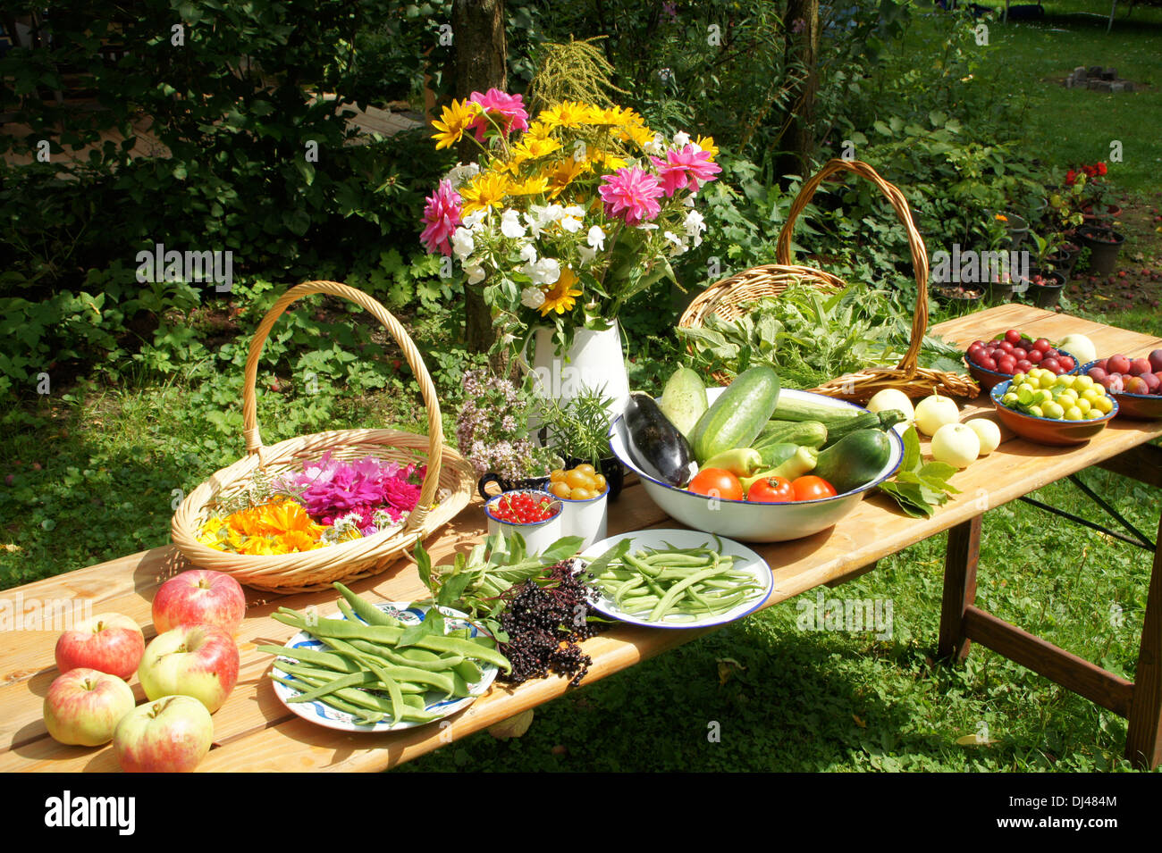 Vegetables, Fruits, Flowers, Herbs Stock Photo