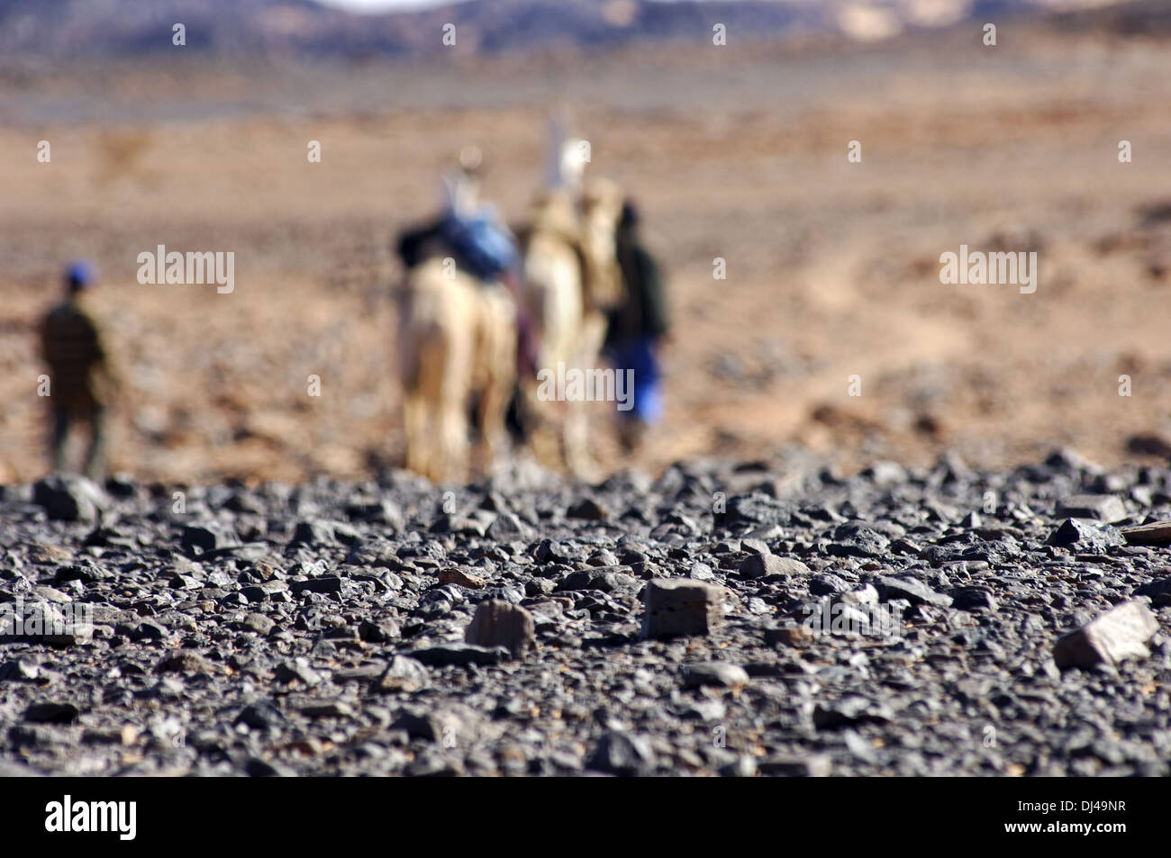 hot shimmering air blurring a camel caravane Stock Photo