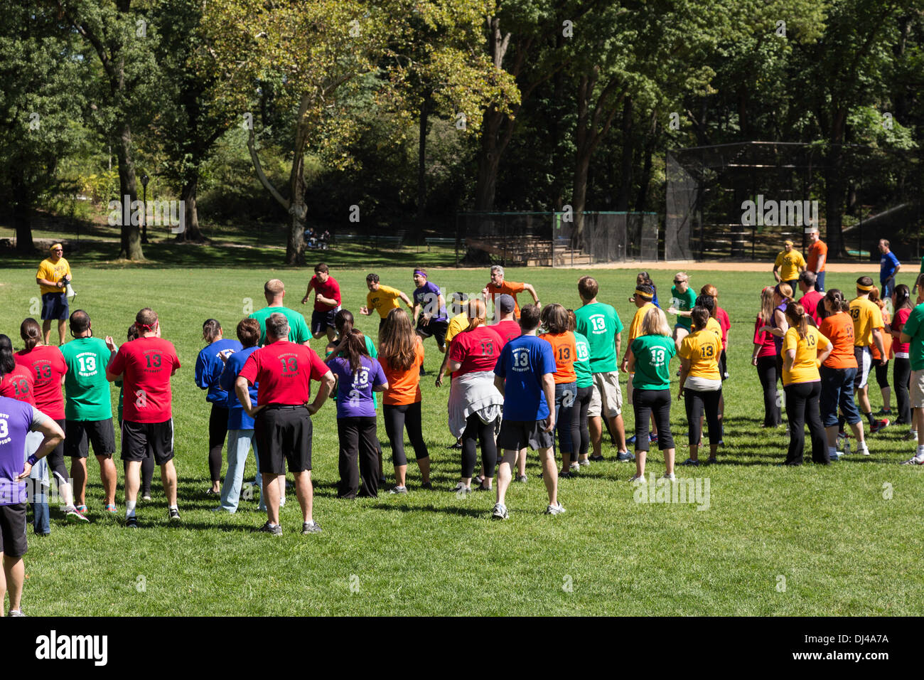 Team Building Activities For Adults Nyc