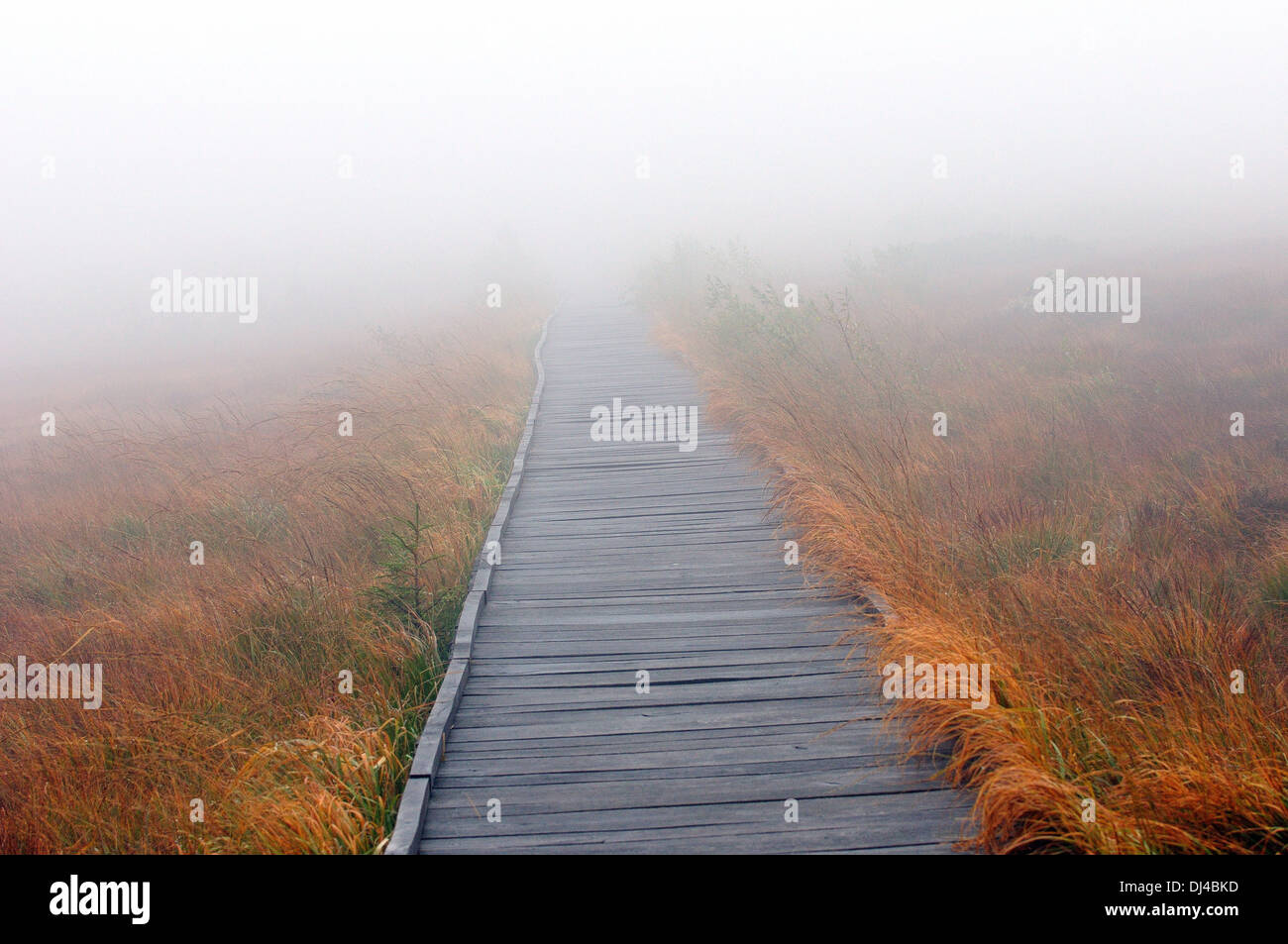 Where the road leads - Where Stock Photo
