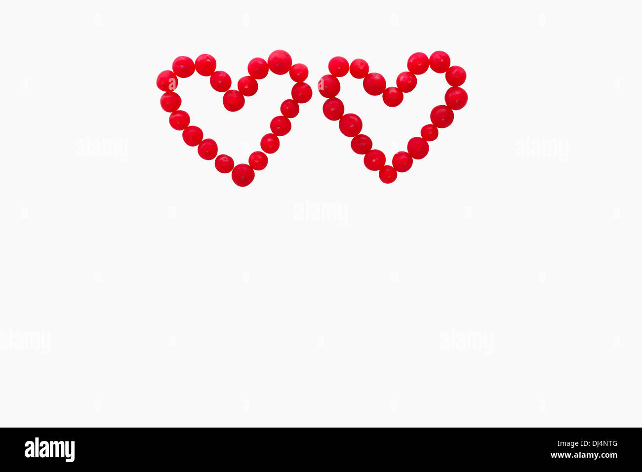 Valentine card concept. Red yew fruits forming two hearts, isolated on white background with copy space - Stock Image