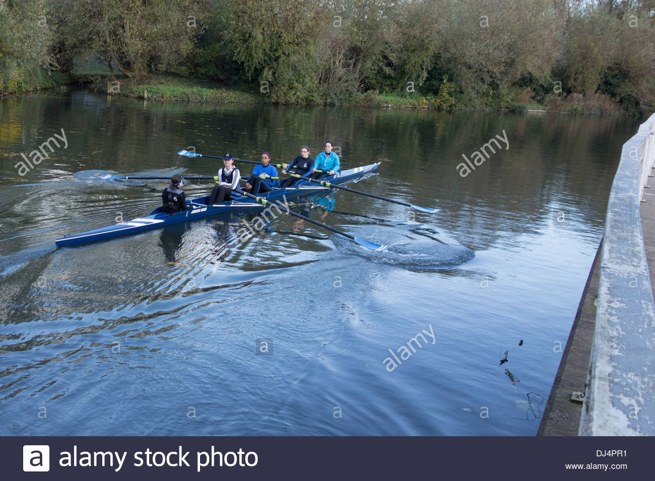 All female rowing crew in a coxed four on the River Cam in Cambridge - Stock Image