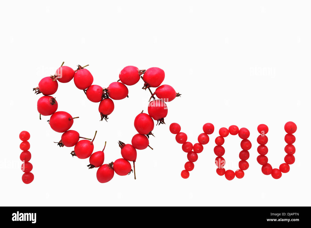 Valentine card concept. Red yew and hawthorn fruits forming I love you message, isolated on white background. - Stock Image