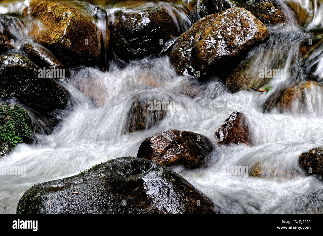 Slippery and wet by the waterfall - Stock Image