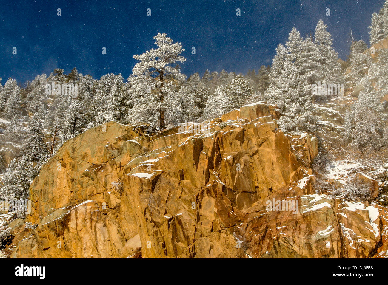 Winter in the Mountains of Colorado - Stock Image