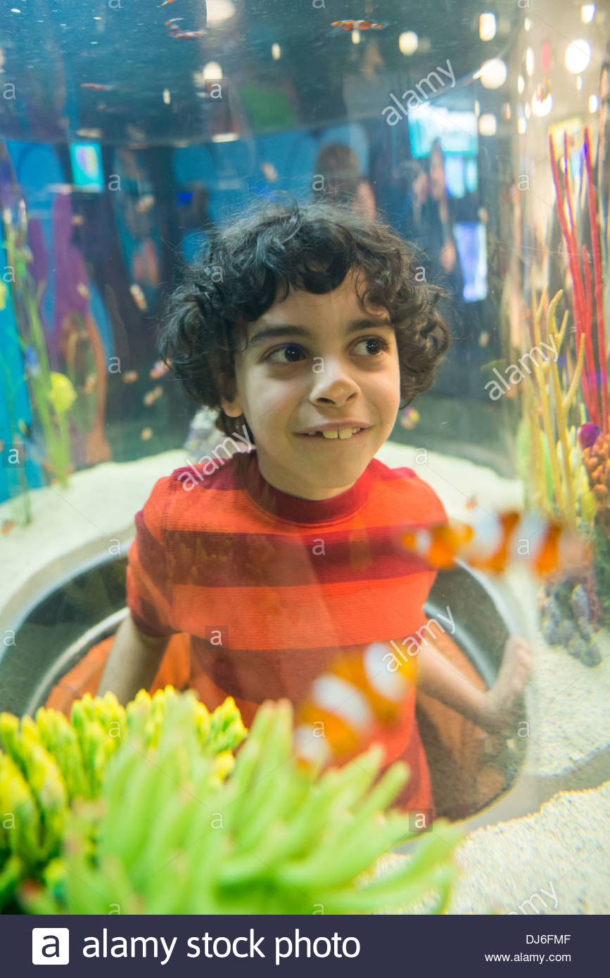 Hispanic boy in an aquarium. Enjoying the educational experience of knowing about the marine and freshwater habitats. Having fun - Stock Image