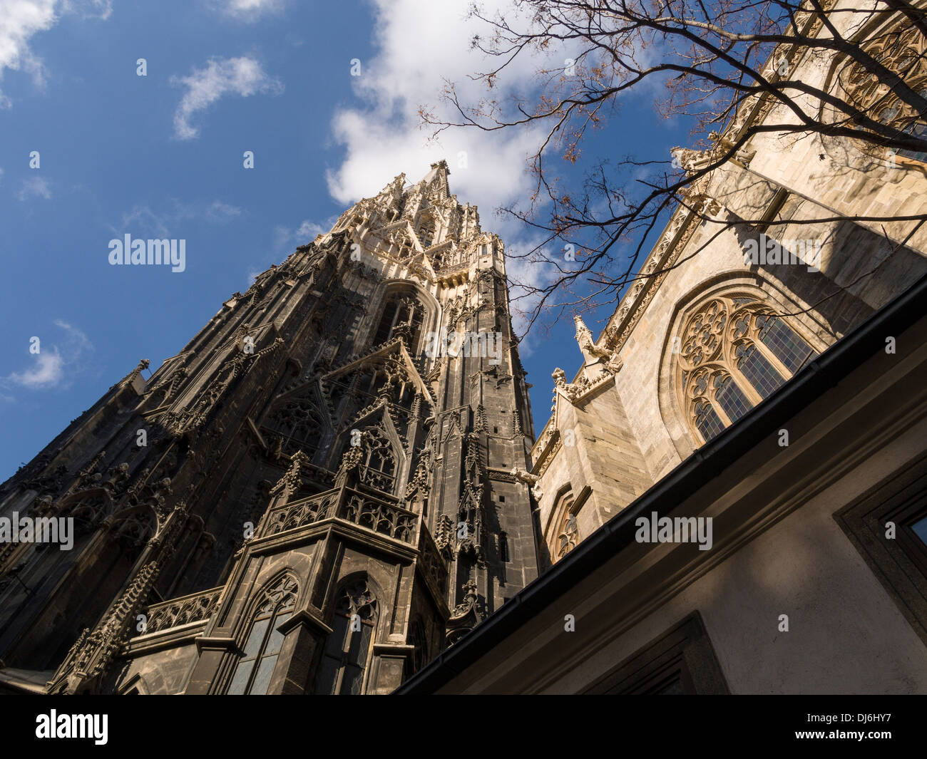Still Lots to Clean: Steffi from below. The soot covered lower stones of the main tower of the Cathedral shows future work - Stock Image