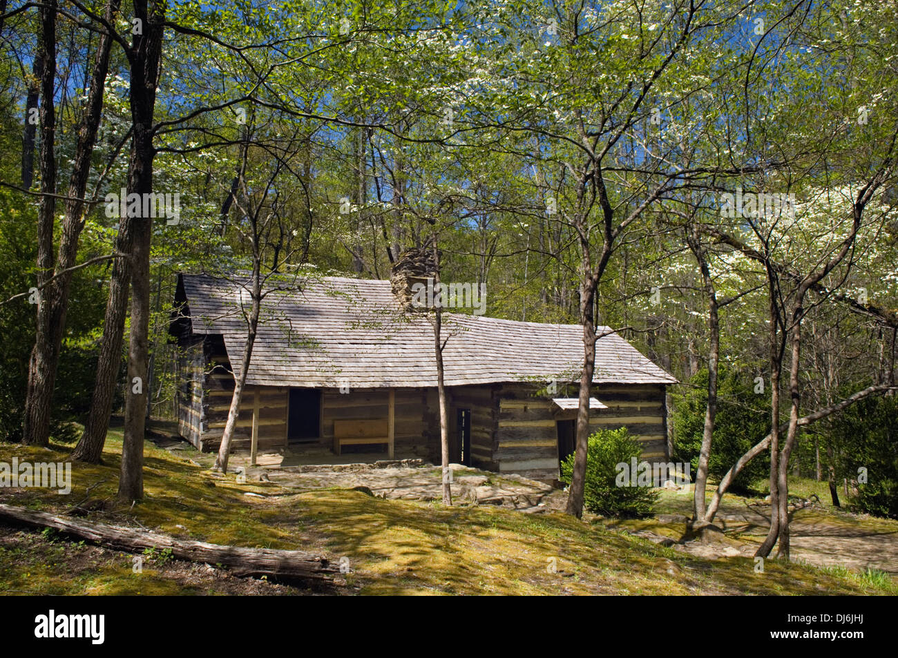 smoky cabin areas cherokee cabins and the hd nc in city of bryson arrow rentals nantahala mountains head mountain lodge