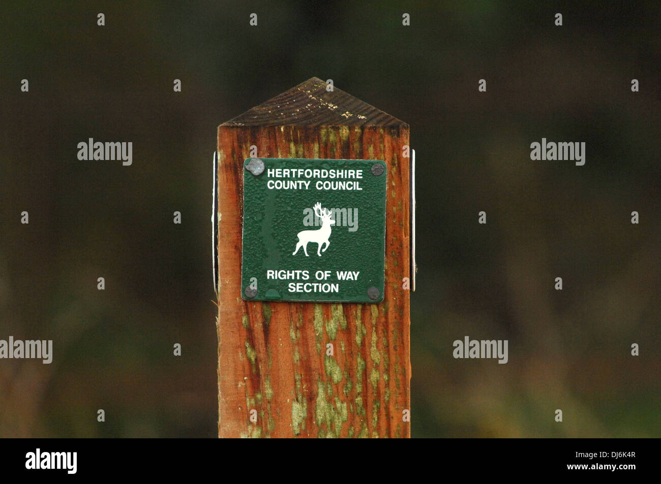 Sign post on path showing right to public access (rights of way) - Stock Image