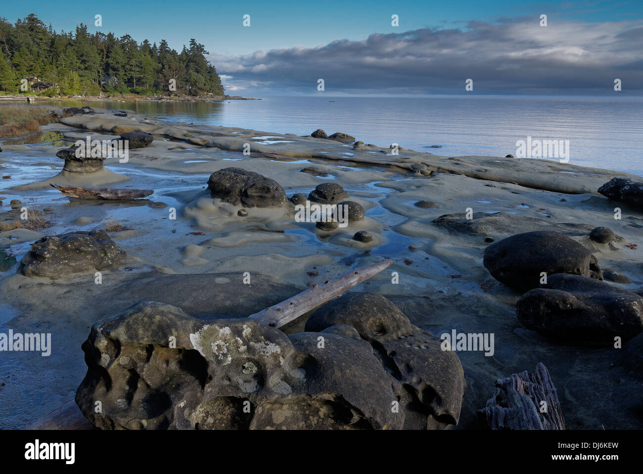 Tidepools, Whaling Station Bay, Hornby Island, British Columbia, Canada - Stock Image