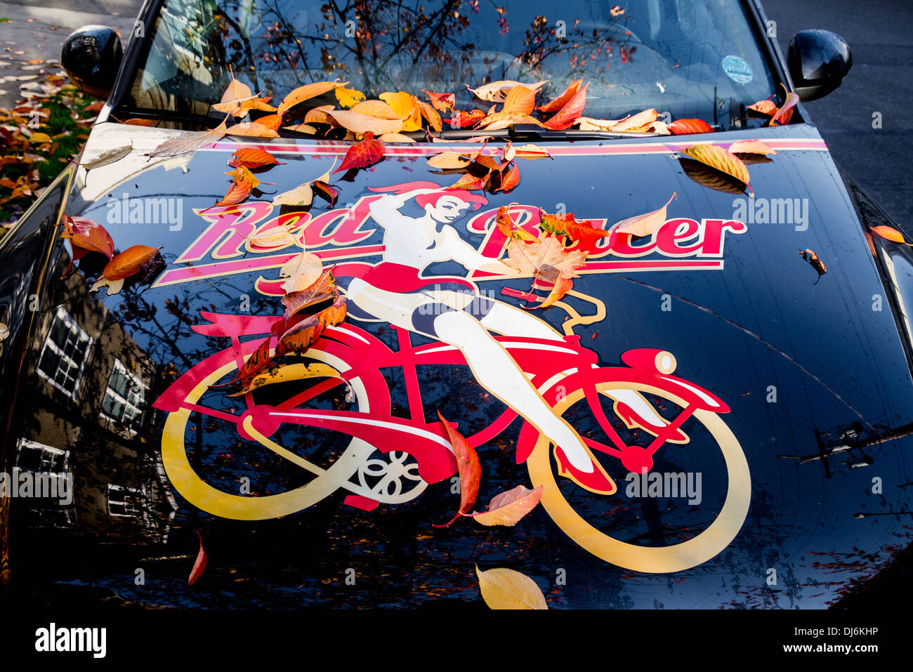Leaves on Red Racer Beer vehicle. - Stock Image