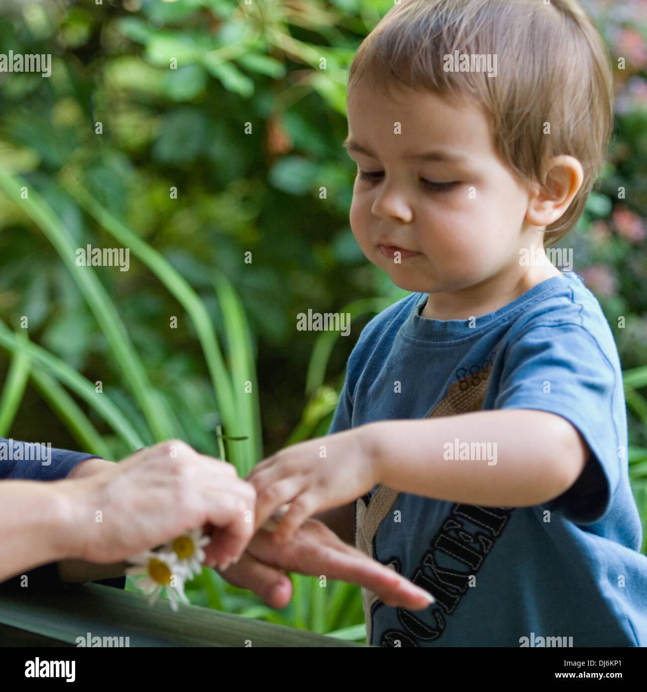 Two Year Old Boy Interacting with His Grandmother Outdoors - Stock Image